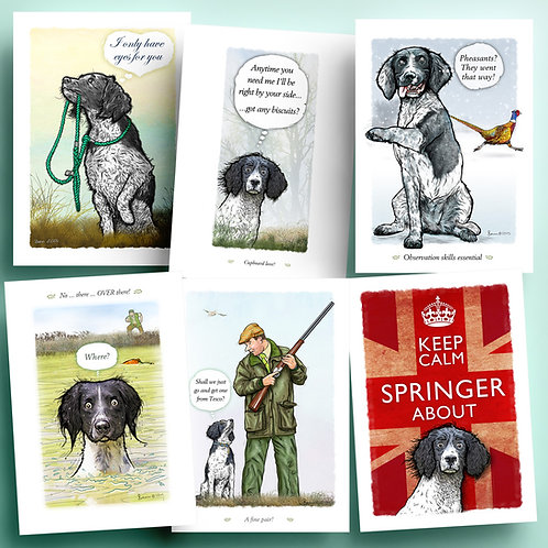 Black and white spaniels - 6 pack