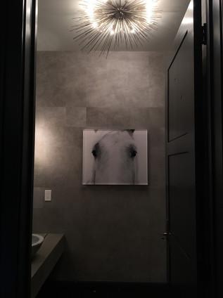 powder room art.jpg