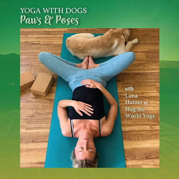 yoga-with-dogs-web.jpg