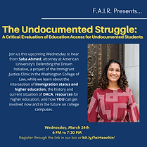 The Undocumented Struggle_ 2.png
