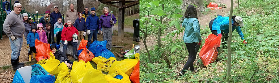 Volunteers after a creek cleanup in Tilden Woods; two volunteers pulling invasive plants in Cabin John Local Park.