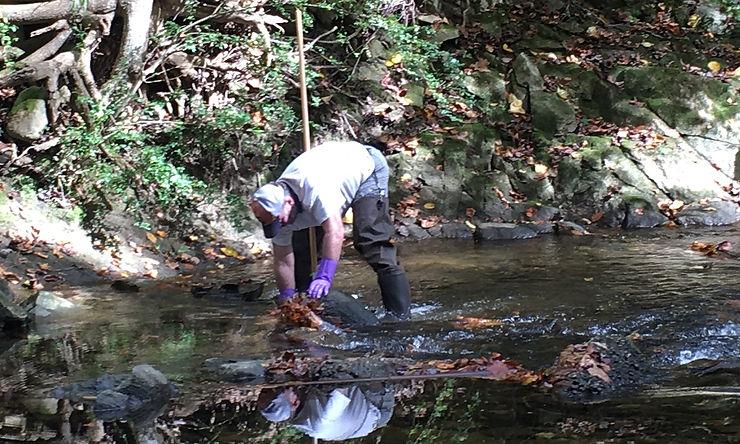 IMG_2576-creek-monitoring-Oct2020-rs-200