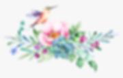 293-2934985_hummingbird-clipart-watercol