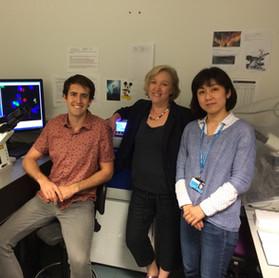 Alex, Gillian and Yukako at the microscope