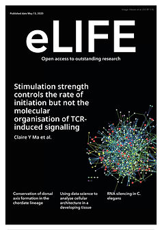 eLife-cover-a4-page-001.jpg
