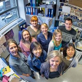 Gillian Griffiths group, 2012