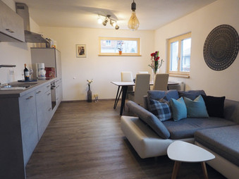 Wohnküche_Wohnbereich_4_Apartment_Silber