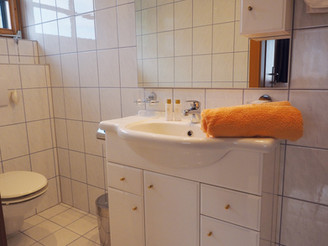Bad-Dusche-WC Apartment Silbertal (Large