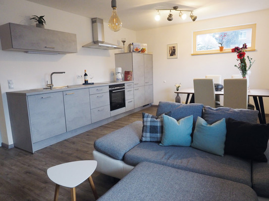 Wohnküche_Wohnbereich_1_Apartment_Silber