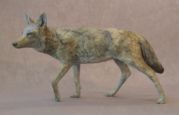 Coyote, Life Size