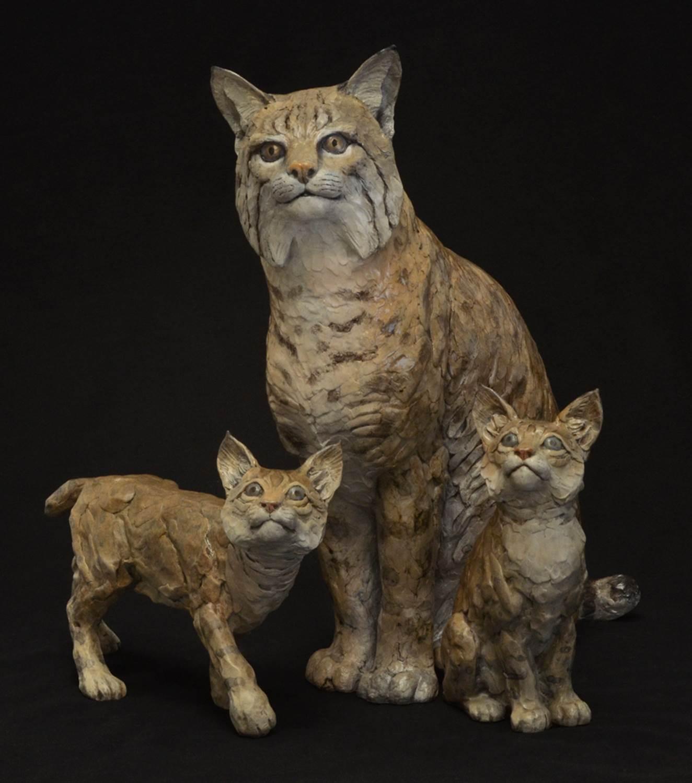 Bobcat Mama and Babies