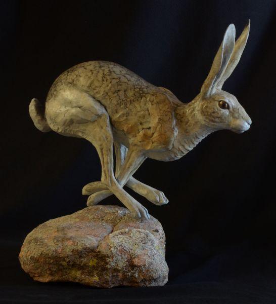 Jack Rabbit V