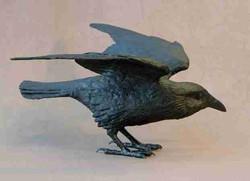 Raven XIC