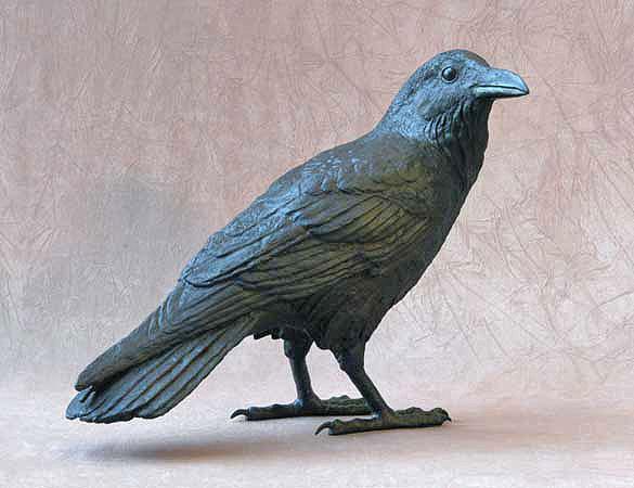 Raven VIC