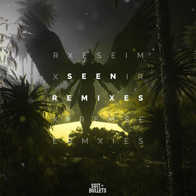 Seen (Remixes)