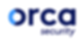 Orca Security - Vulnerability Management for Public Cloud