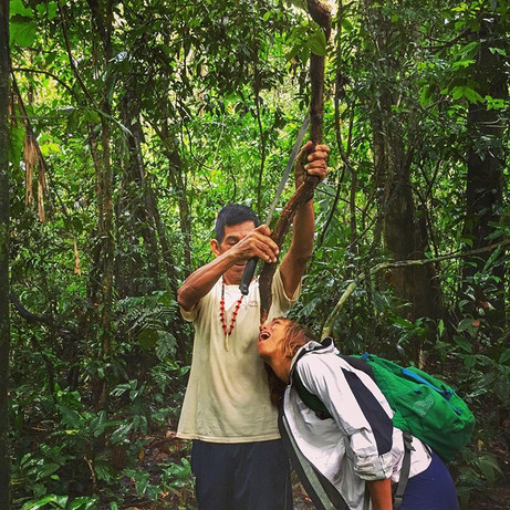Lesson in plant communication and ethnobotany in the Peruvian Amazon
