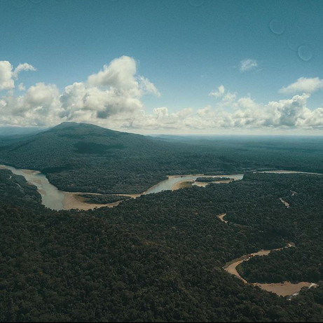 The Madre de Dios river, where Parign Hak is located (as seen from above)