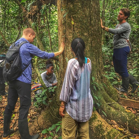 Lesson is plant communication and ethnobotany in the Peruvian Amazon