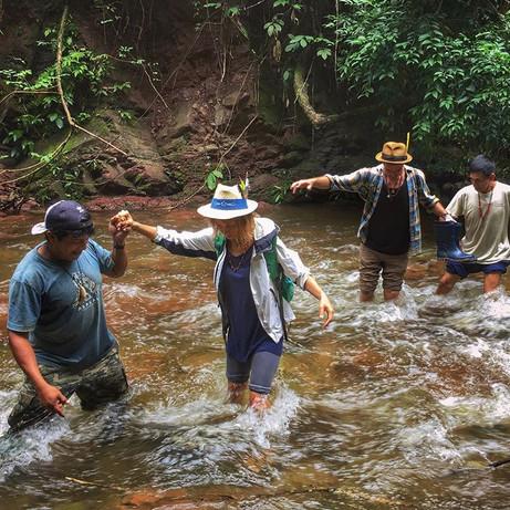 Jungle explorations