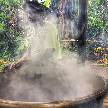 Alberto tending to an Ayahuasca pot