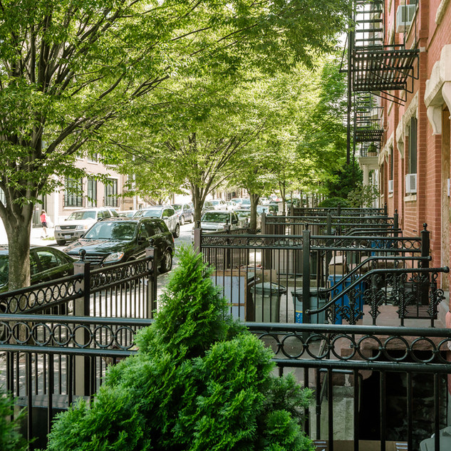 Park Slope Neighborhood