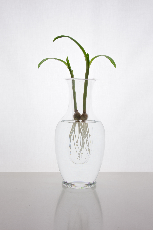 Ludmilla vase - large
