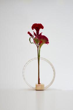 Vase | no.16511421