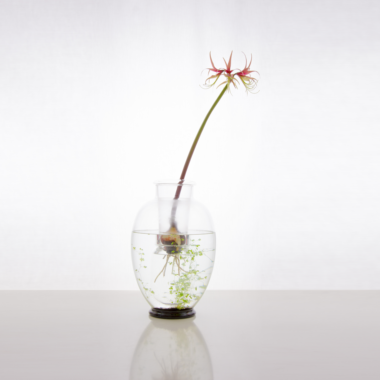 Ludmilla vase - medium