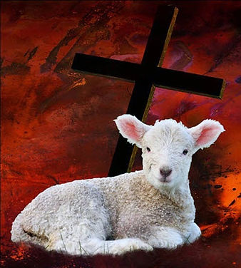 PassoverLamb_edited.jpg