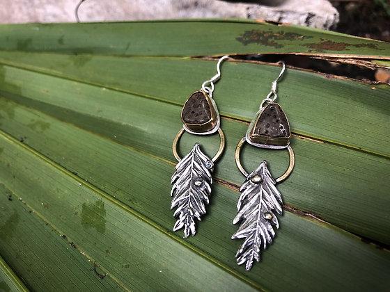 The Petrified Palm Wood + Cypress Earrings