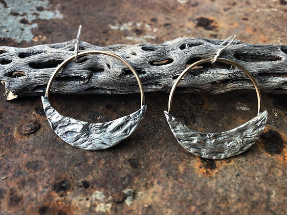 The Cholla Crescent Hoops