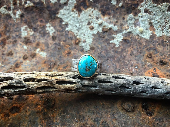 The Cholla + Turquoise Skull Ring