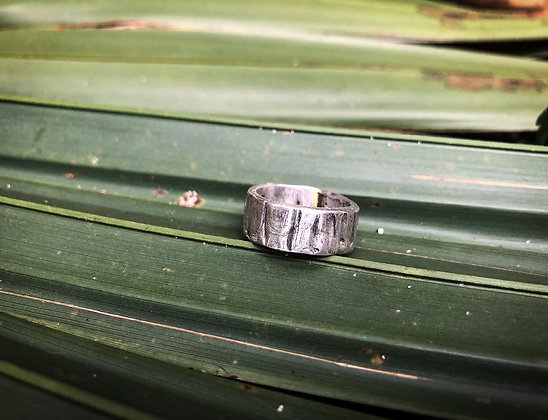 The Alligator Ring