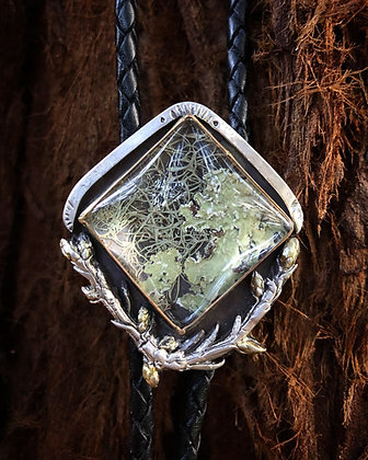 The New Growth Bolo
