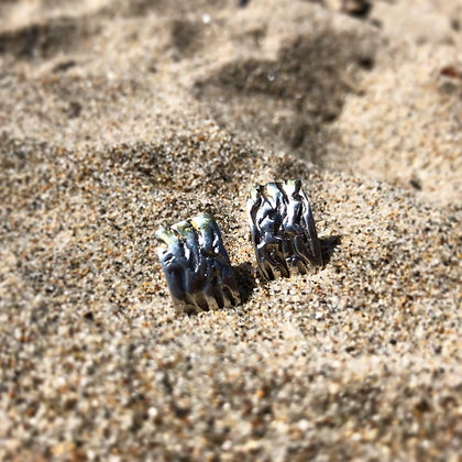 The Kelp Studs