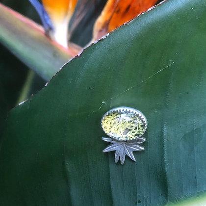 The Palmetto Pin