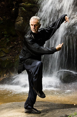 Master Frank Paolillo Sifu Chen Tai Chi Qi Gong Exercise | Franklin Highlands Cashiers Sapphire Asheville NC