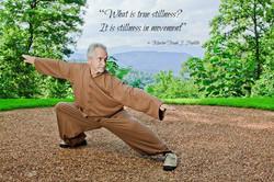 True Stillness