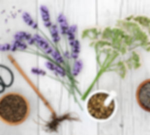 Lavender and chamomile_dreamstime_m_1317