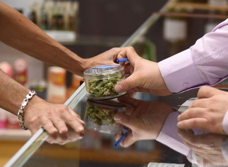 Forbes: The Cannabis Tax Experiment