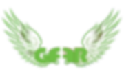 getfitflyright logo green.png
