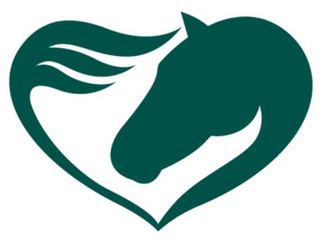 Welcome to the Riding with HEART Blog!