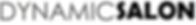 Dynamic Salon Logo.png