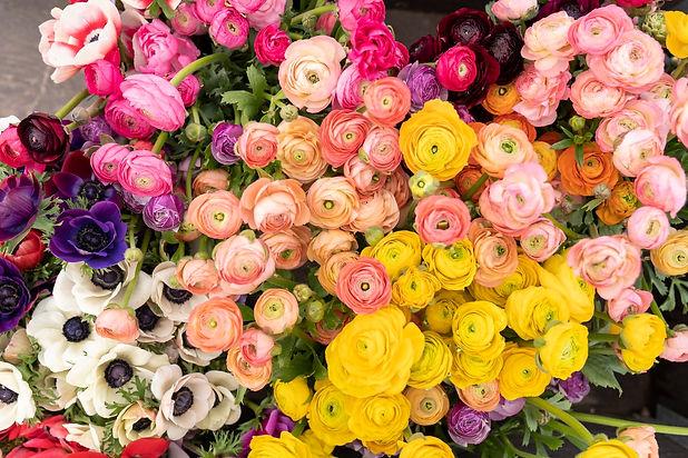 RD Floral Design Header.jpeg