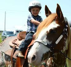 Horse Riding Lessons_All Ages_Rockton IL