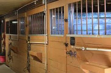Rockin PJJR Ranch - Rocton IL - Horse Bo