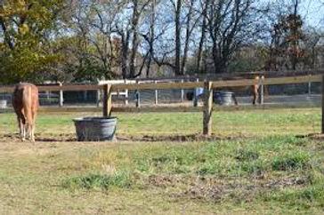 Rockin PJJR Ranch-Rockton IL - Horse Boa