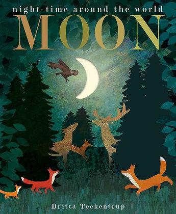 Moon : night-time around the world