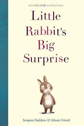 Little Rabbit's Big Surprise
